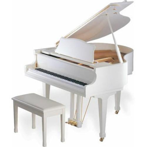 Giới thiệu đàn piano SAMICK