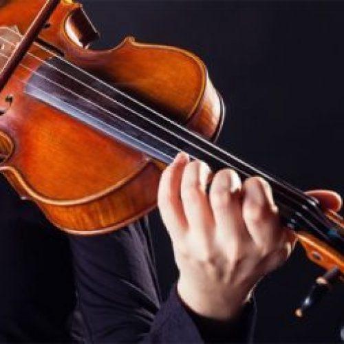Cẩm nang chọn mua một cây đàn violin chất lượng