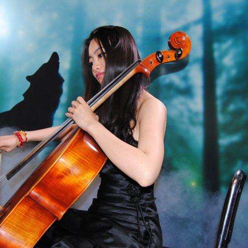 Những bản hòa tấu đàn violin bất hủ mọi thời đại