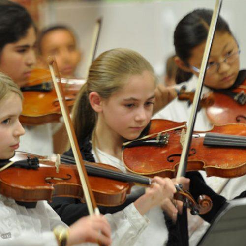 Những bài tập đàn violin mà người mới học không thể bỏ qua