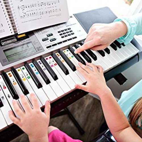 Mua đàn organ cho bé cần chú ý điều gì?