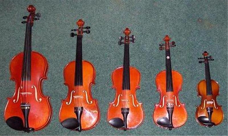 đàn violin kapok