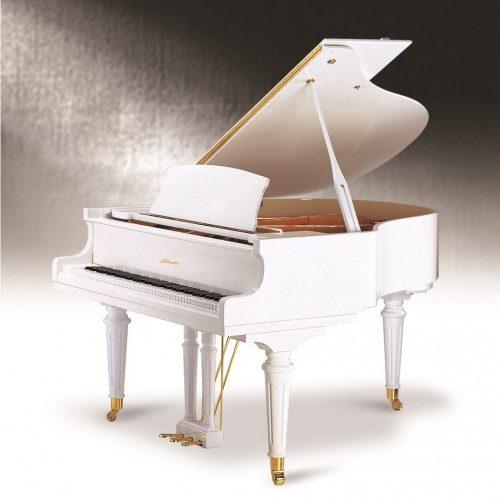 Đàn Piano Grand Ritmuller 160R1 A112 88 Phím Nhập Từ Đức