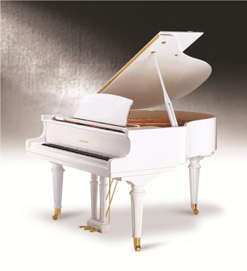 Đàn Piano Ritmuller 160R1 A112
