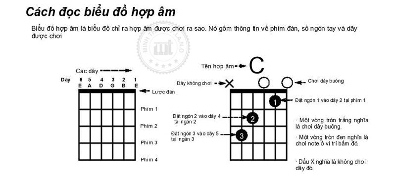 Phương pháp bấm hợp âm đàn guitar