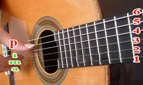 Đàn guitar có 6 dây