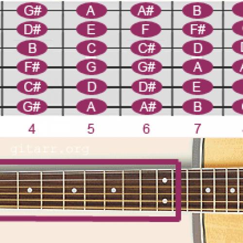 Cách xác định chính xác các vị trí các nốt nhạc trên cây đàn guitar