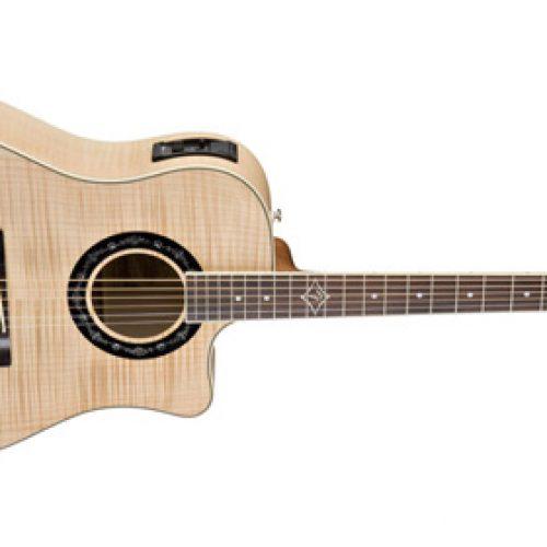 Đàn Guitar Fender T-Bucket 400CE có gì đặt biệt