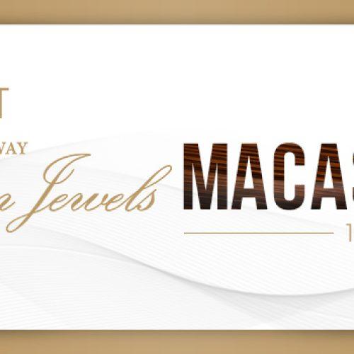 """Sự kiện ra mắt phiên bản đặc biệt """"Steinway Macassar Ebony"""" tại Việt Nam"""