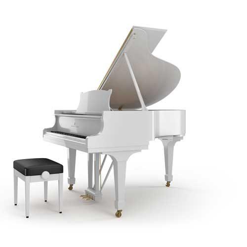 Mới tập đàn piano, nên mua đàn piano loại nào?